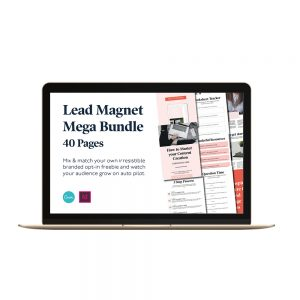 Lead Magnet Bundle indesign & canva templates for entrepreneurs